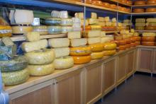 WInkelinterieurbouw voor een kaaswinkel in Hattem